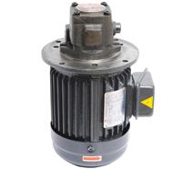 VP-20-FA3立式油泵专用电机