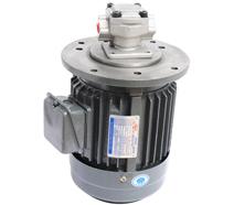 HGP-2A立式油泵电机