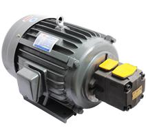 PV2R1油泵电机