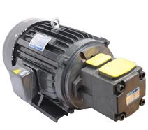 PV2R2油泵专用电机