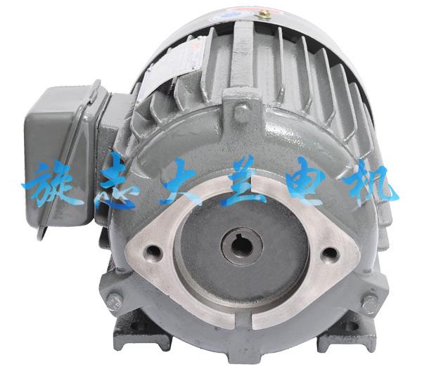 VP12油泵电机