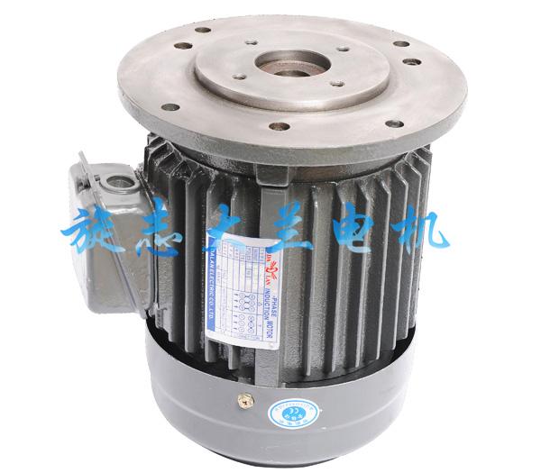 HGP-2A立式油泵电动机