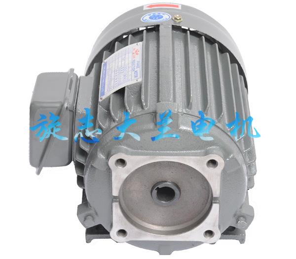 VP40油泵专用电机