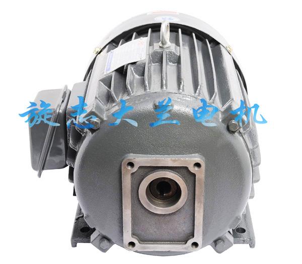 CBN油泵专用电机