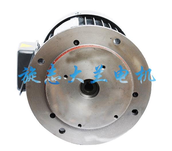 CBN立式油泵专用电机