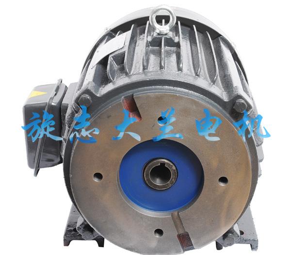 T6B油泵专用电机