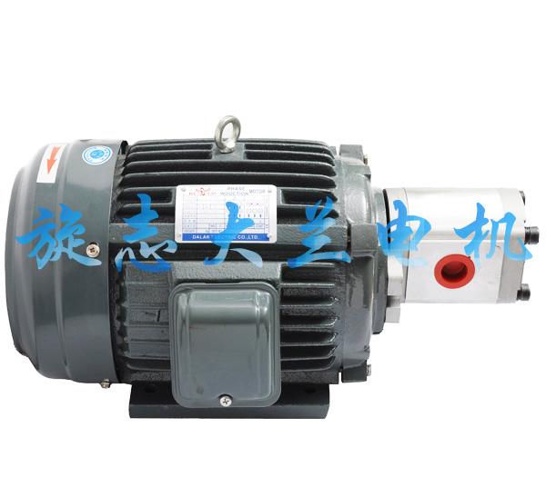 【山东】打包机液压电机哪里找?大兰电机规格型号齐全任君挑