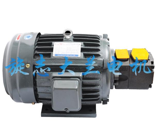 【黑龙江】下单订购大兰5.5千瓦油泵专用电机,是靠运气还是实力?
