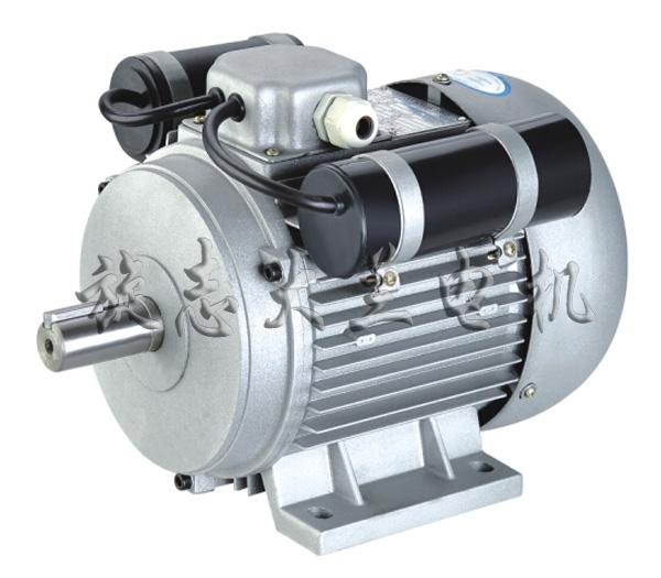 YL双值电容单相异步电动机