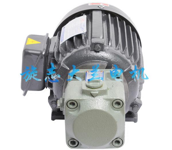 YB1油泵专用电机
