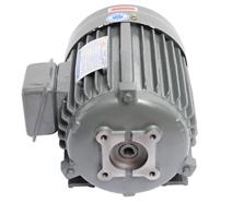 PA齿轮泵专用电机