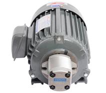 HGP-1A齿轮泵专用液压电机