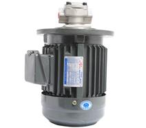HGP-1A立式液压油泵电机