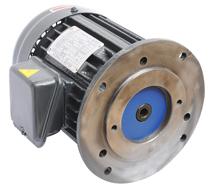VP20立式油泵专用电机