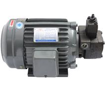 VP-20-FA3液压油泵电机
