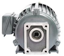 CBN专用油泵电机