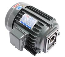 CBN油泵电机