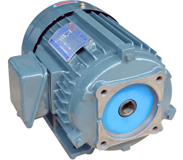 VP40叶片泵专用电机