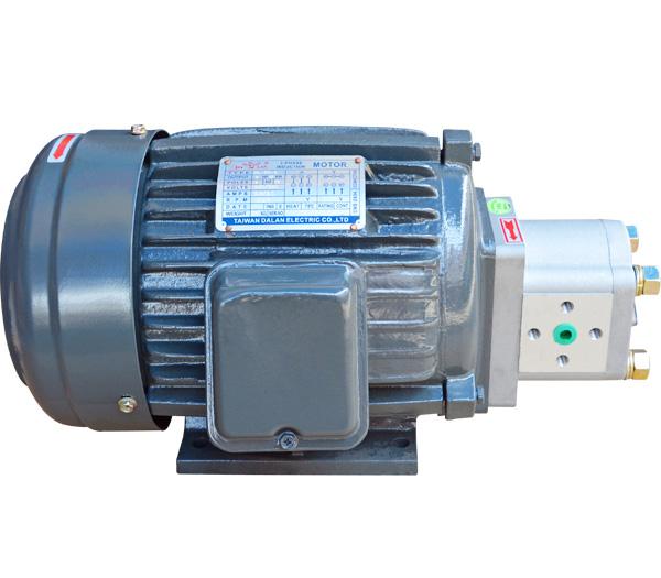 CBN直插式油泵电机
